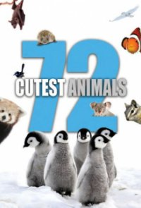 Cover 72 Cutest Animals, Poster