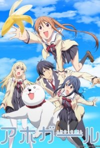 Aho Girl Cover, Poster, Blu-ray,  Bild