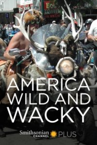 America: Wild & Wacky Cover, Online, Poster