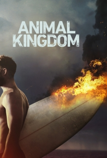 Cover von Animal Kingdom (Serie)