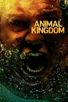 Animal Kingdom, Cover, HD, Serien Stream, ganze Folge