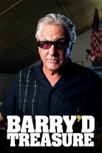 Cover der TV-Serie Barry'd Treasure