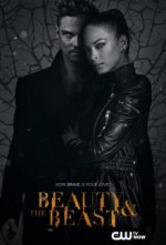 Cover Beauty and the Beast, Poster Beauty and the Beast