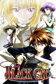 Black Cat, Cover, HD, Serien Stream, ganze Folge