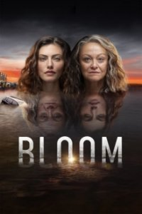 Poster, Bloom Serien Cover
