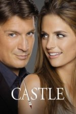 Cover Castle, Poster, Stream