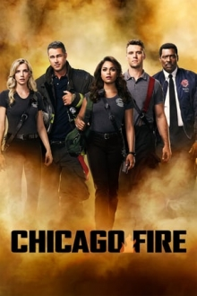 Cover von Chicago Fire (Serie)