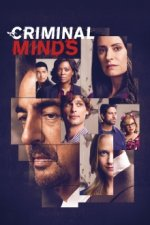 Cover Criminal Minds, Poster Criminal Minds