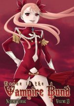 Cover Dance in the Vampire Bund, Poster Dance in the Vampire Bund