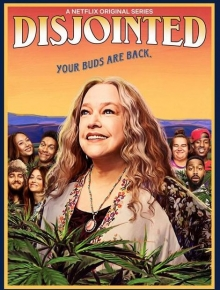 Disjointed Serien Stream