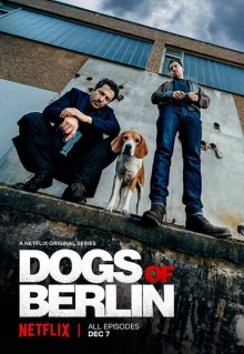 Dogs of Berlin, Cover, HD, Stream, alle Folgen