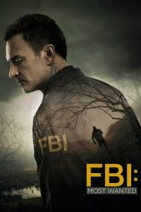 Poster, FBI: Most Wanted Serien Cover