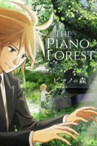 Cover Forest of Piano, Poster Forest of Piano