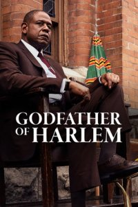 Poster, Godfather of Harlem Serien Cover