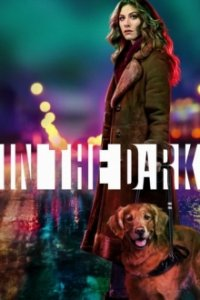 Poster, In the Dark (2019) Serien Cover