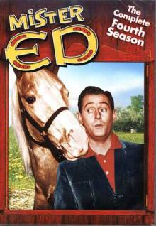 Mr. Ed Cover, Online, Poster