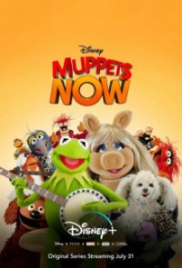 Poster, Muppets Now Serien Cover