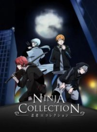 Poster, Ninja Collection Serien Cover