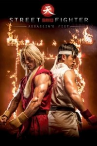 Cover Street Fighter: Assassin's Fist, Poster
