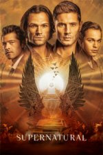 Staffel 4 Cover, Poster