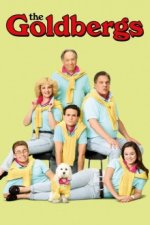 Cover Die Goldbergs, Poster Die Goldbergs