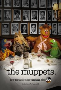 The Muppets Cover, Poster, Blu-ray,  Bild