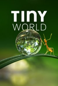 Poster, Tiny World Serien Cover