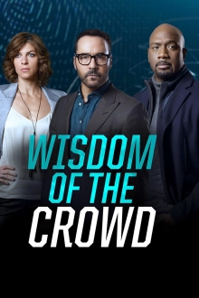 Wisdom of the Crowd, Cover, HD, Stream, alle Folgen