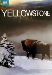 Cover Yellowstone Nationalpark, TV-Serie, Poster